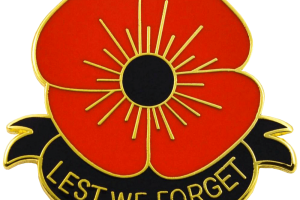 remembrance day transparent background poppy png 4